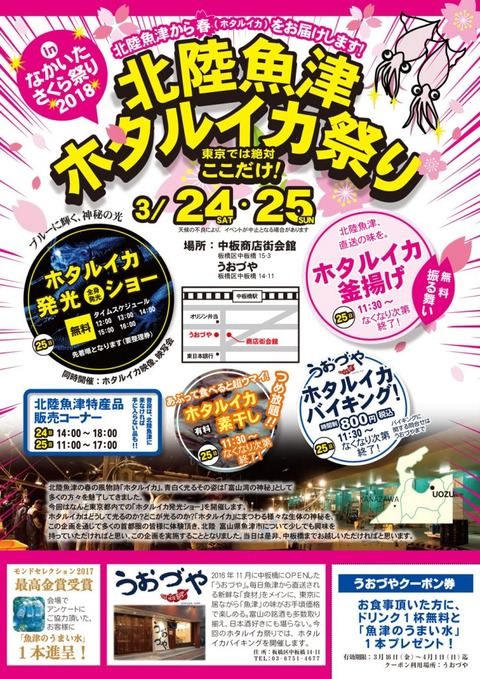 sakura_hotaru-724x1024