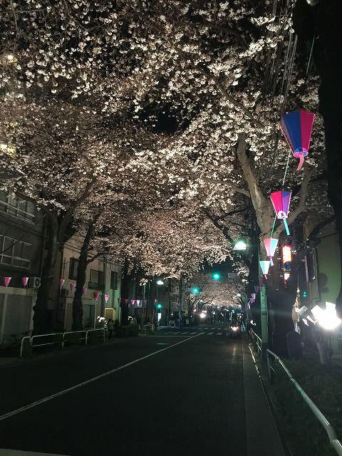 写真 2016-03-30 20 25 01