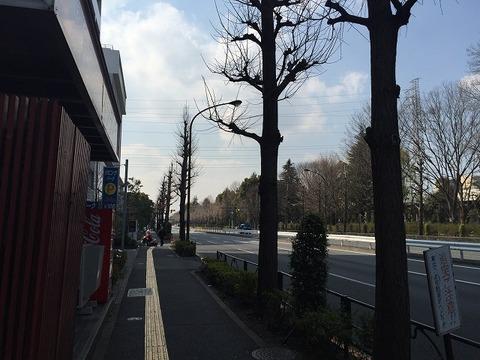 写真 2017-03-29 14 00 52