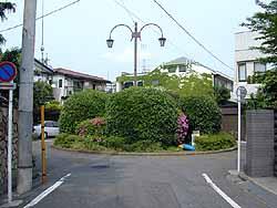 tokiwadai2w